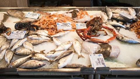 precios peces