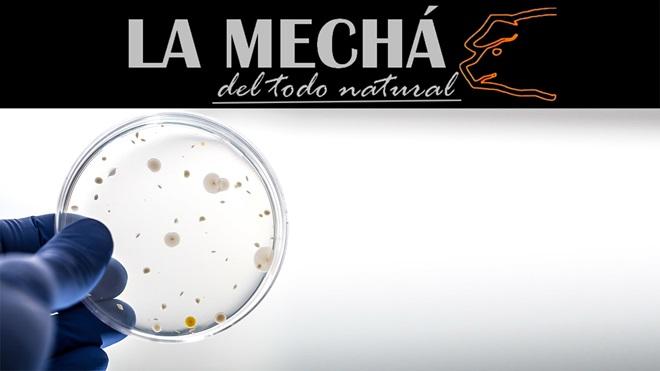 listeriosis-la-mecha