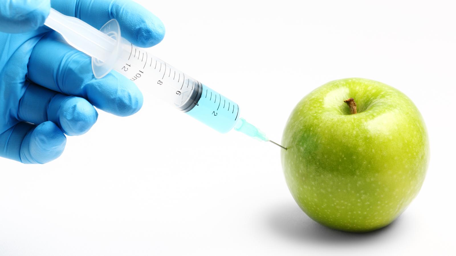Organismos Genéticamente Modificados | OCU