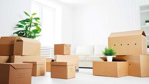 Mudanza casa salon cajas planta blanco casa