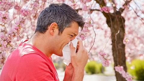 Alergias y rinitis