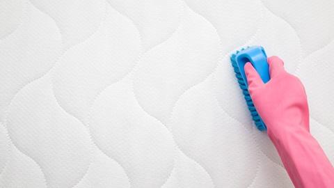 limpiar colchón con cepillo