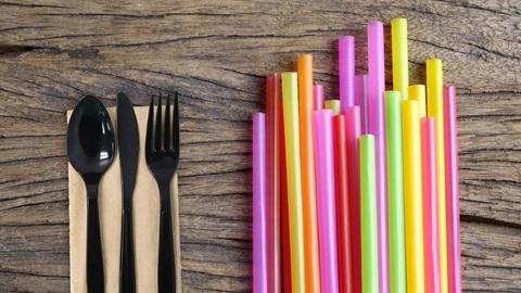Fin al plástico de un solo uso