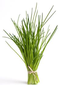 hierbas aromáticas cebollino