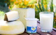 Productos lácteos fermentados