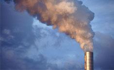 Delitos medio ambiente