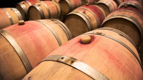 Vinos tintos: maduración